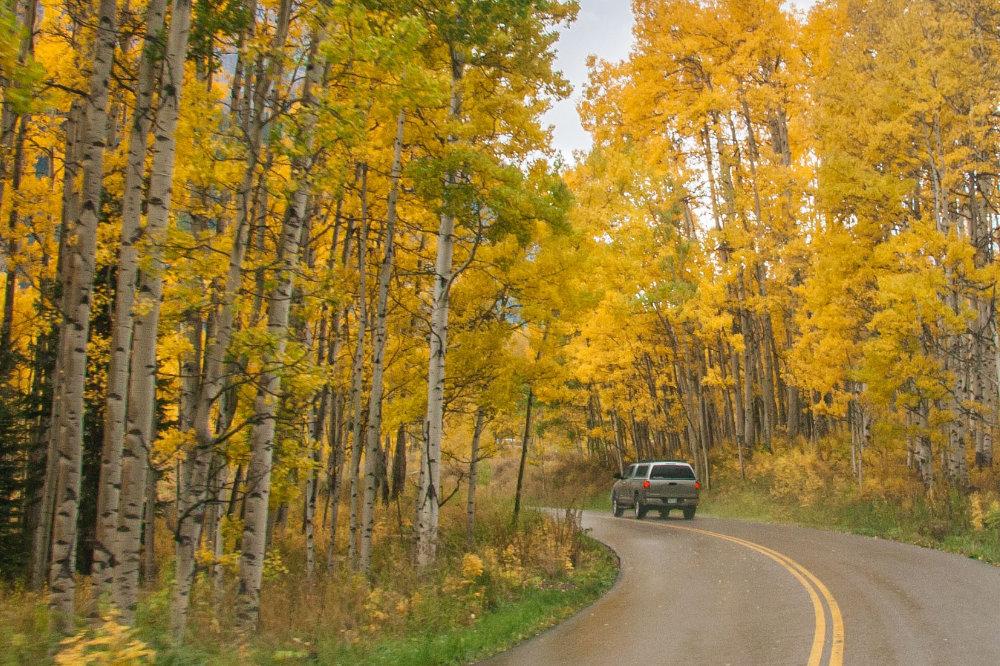 Biztonságos utazás ősszel is